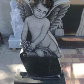 Памятник д113
