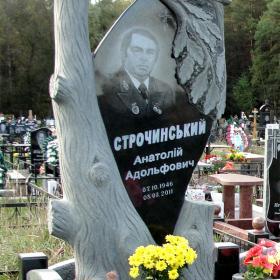 Памятник т121